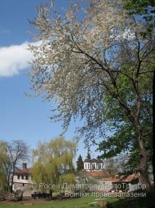 Горнолозенски манастир
