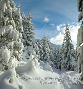 Зима в Рила
