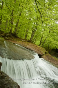 Острешка река край Априлци