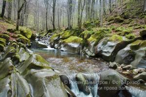 Река Пръскалница