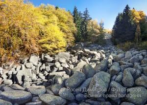 Есен край Златните мостове