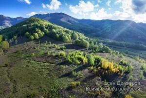 Стара планина край Вършец